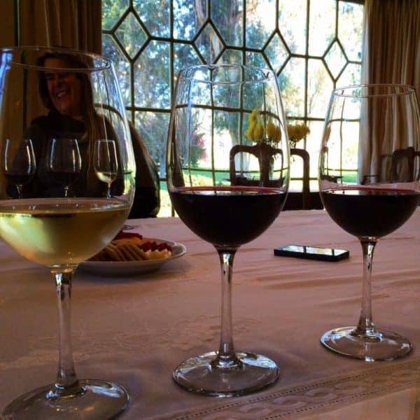os vinhos