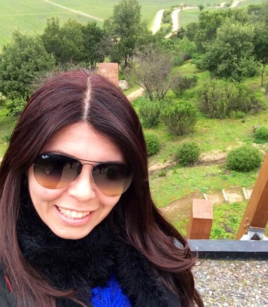 Vista do Topo da Vinícola