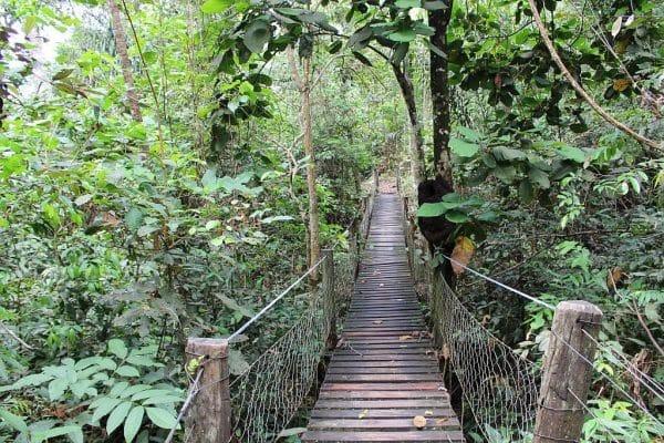 Passando por pontes de madeira ...