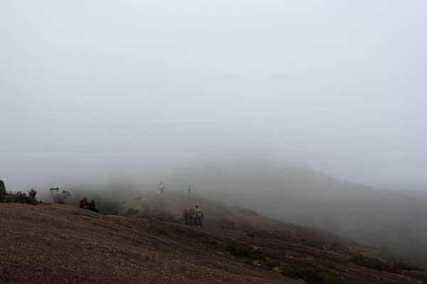 Monte Verde 03 -15 045