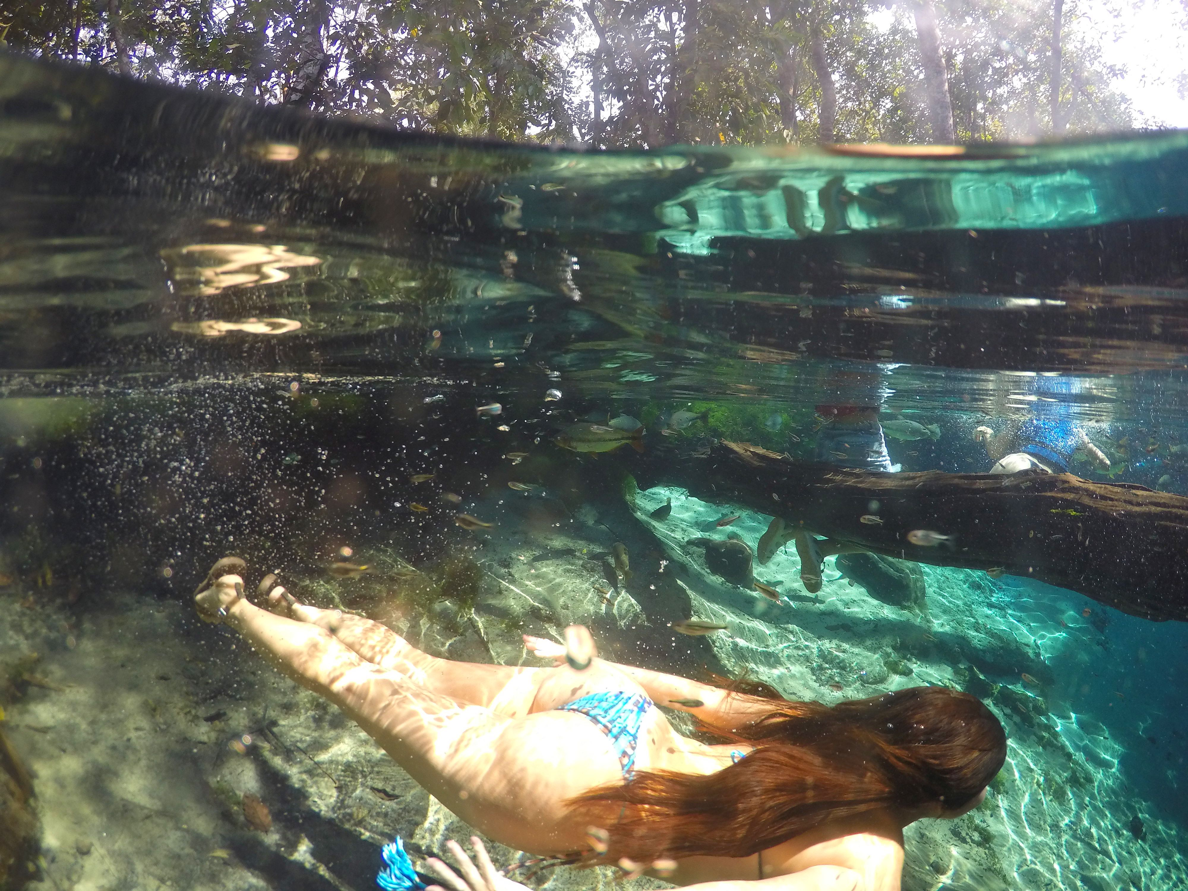 aquario-encantado-nobres