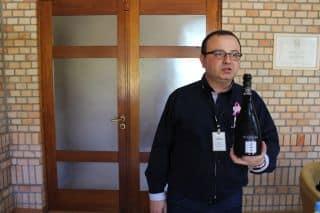 Roteiro-Bento-Gonçalves-Vale-dos-Vinhedos-vinicola-miolo