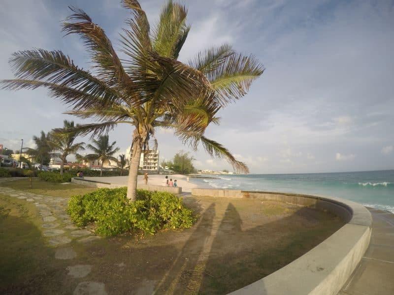 Guia de Barbados 81