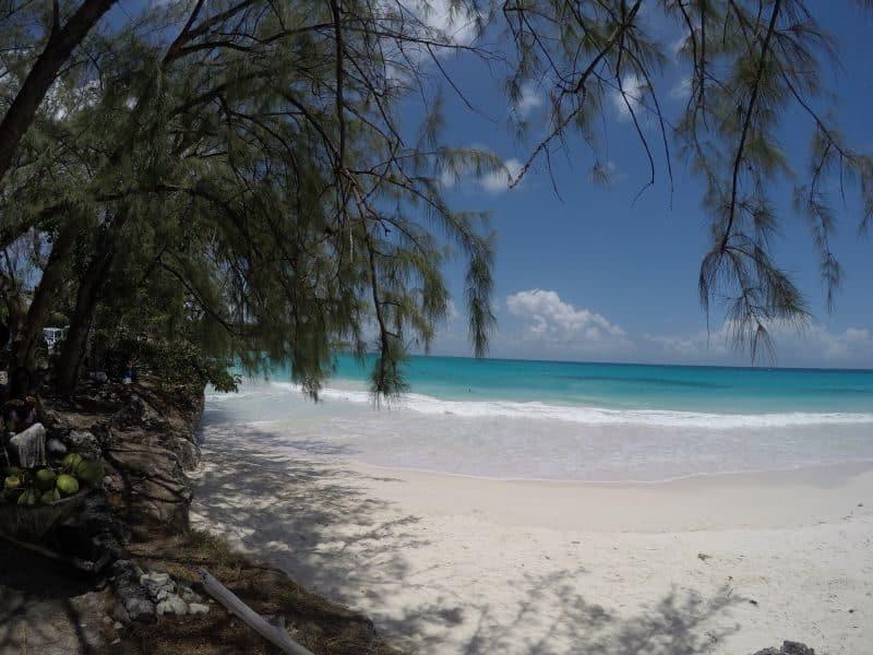 Guia de Barbados 31