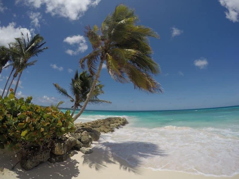 Guia de Barbados 59
