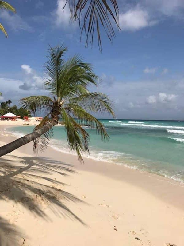 Guia de Barbados 25