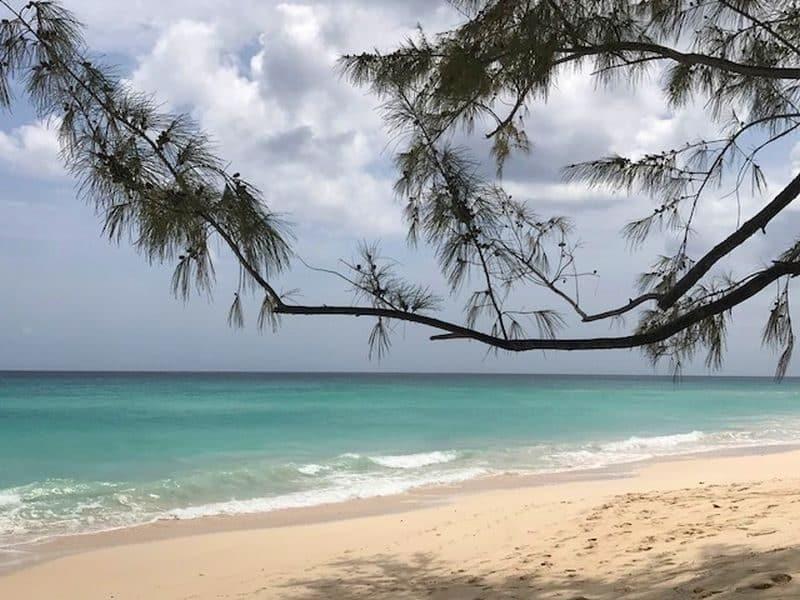 Guia de Barbados 73