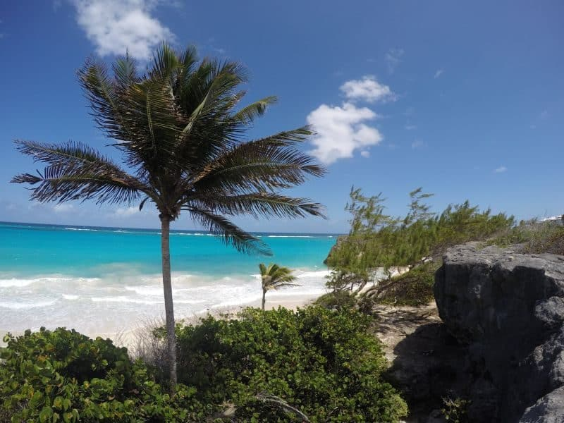 Guia de Barbados 137