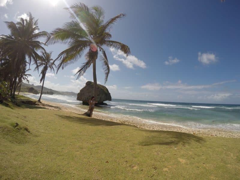Williams Tour Barbados 31
