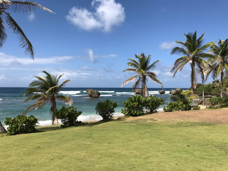 Williams Tour Barbados 37