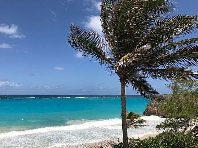 Williams Tour Barbados 27