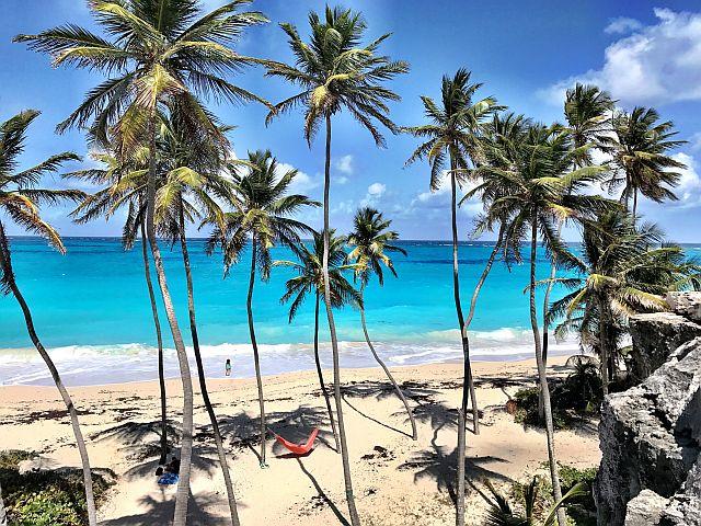 Williams Tour Barbados 29