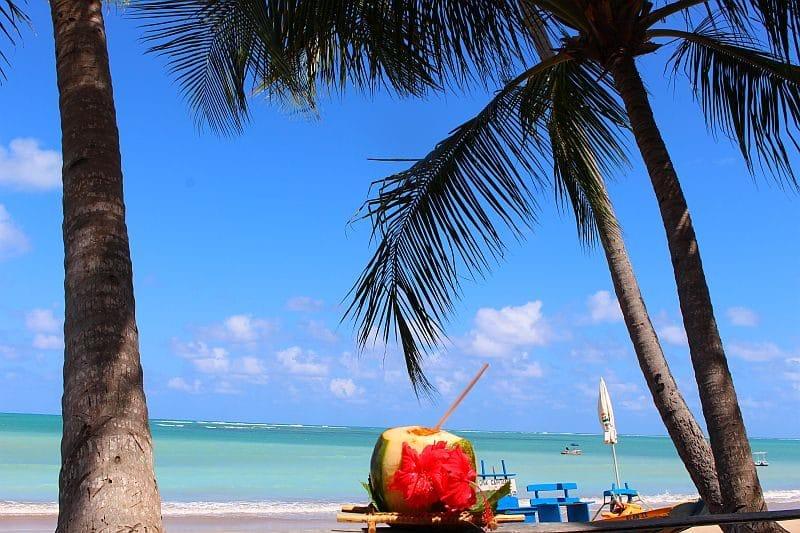 Praia do Patacho e Praia de Lages em Alagoas 31
