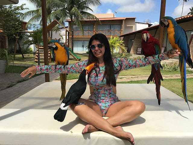 O que fazer em Maragogi Alagoas 19