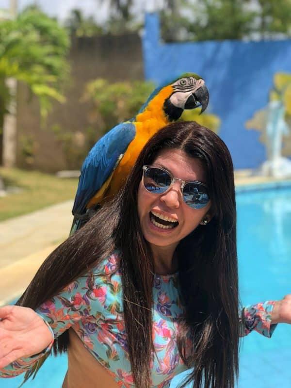 O que fazer em Maragogi Alagoas 3