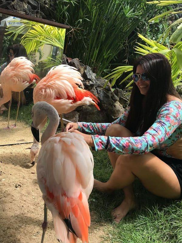 O que fazer em Maragogi Alagoas 15