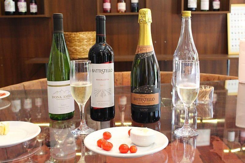 roteiro do vinho em sao roque (10)