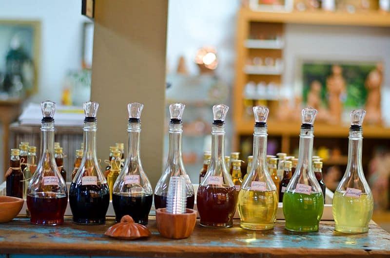 serra gaucha dia do vinho do brasil