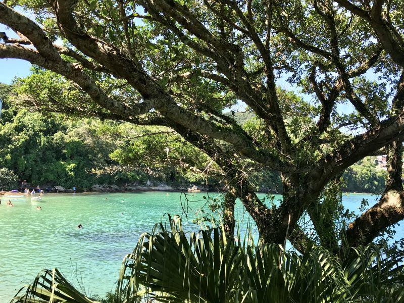 As melhores praias de Santa Catarina 11